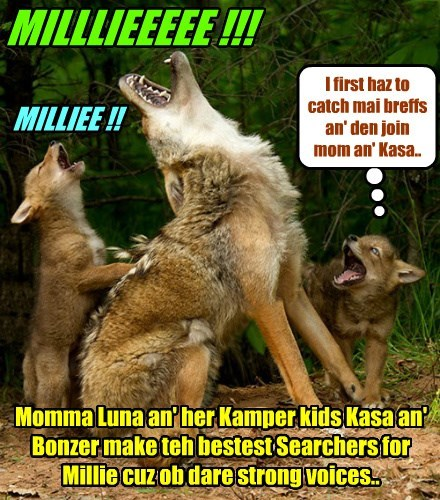 Three eggsellent Searchers for Millie show off dare powerful voices dat carries for miles!