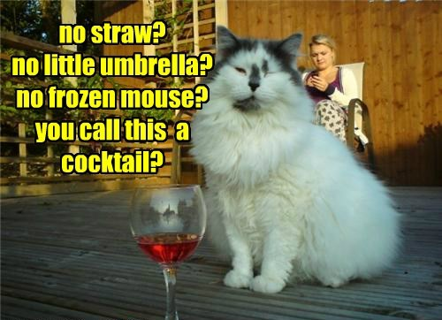 no straw? no little umbrella? no frozen mouse? you call this  a cocktail?
