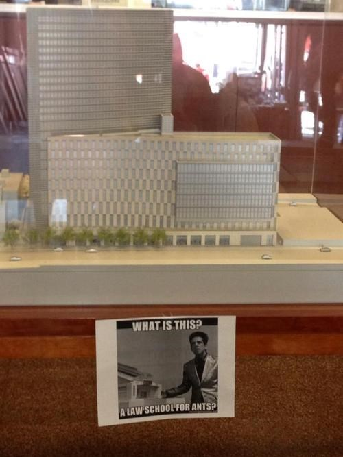 The Law School for Ants Who Can't Litigate Good