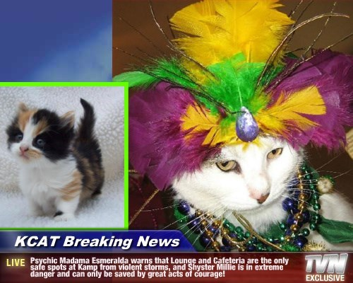 KCAT Breaking News - Psychic Madama Esmeralda warns that Lounge and Cafeteria are the only safe spots at Kamp from violent storms, and Shyster Millie is in extreme danger and can only be saved by great acts of courage!