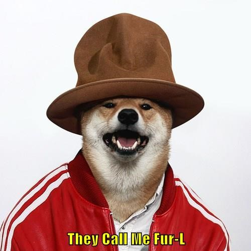 They Call Me Fur-L