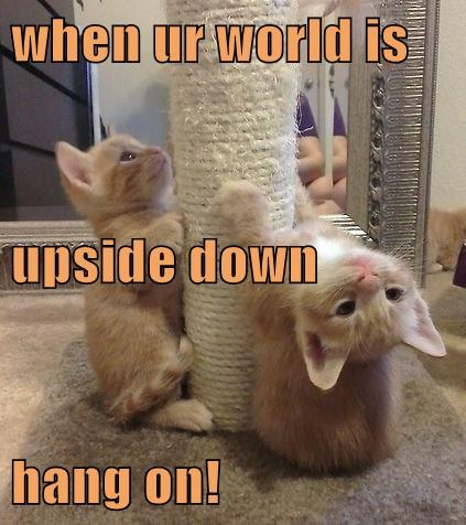 when ur world is upside down hang on!