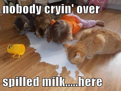 nobody cryin' over  spilled milk.....here
