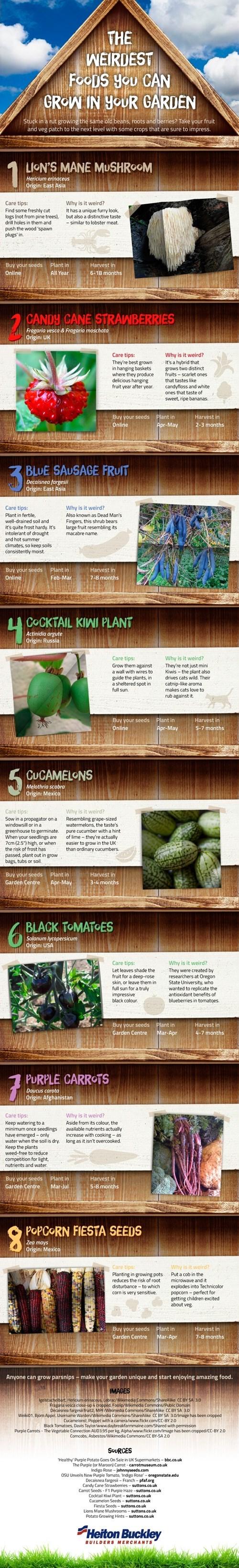 The Weirdest Foods You Can Grow in Your Garden