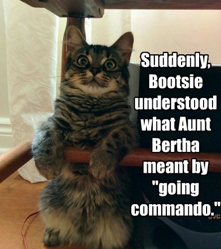 """Suddenly,  Bootsie understood what Aunt Bertha meant by """"going commando."""""""