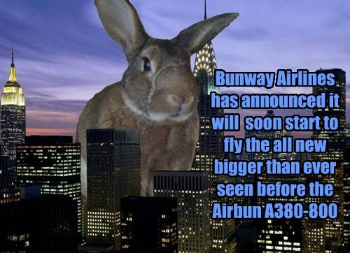 Bunway Airlines  has announced it will  soon start to fly the all new bigger than ever seen before the Airbun A380-800