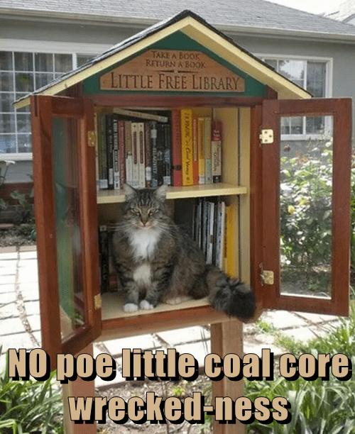 NO poe little coal core wrecked-ness