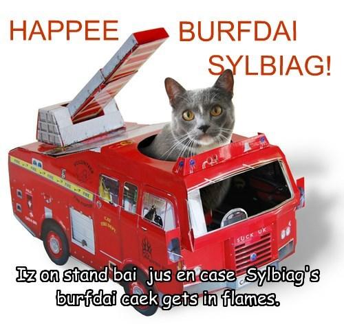 Iz on stand bai  jus en case  Sylbiag's    burfdai caek gets in flames.