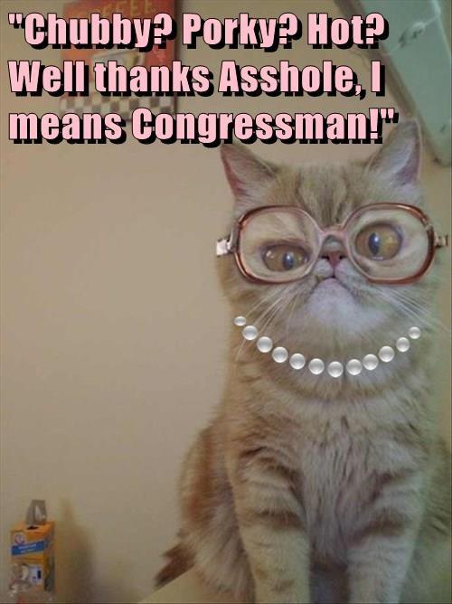 """Chubby? Porky? Hot? Well thanks a**hole, I means Congressman!"""