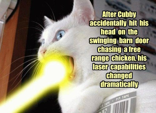 Happy Laser Day!  Thanks for alerting us mamaW!