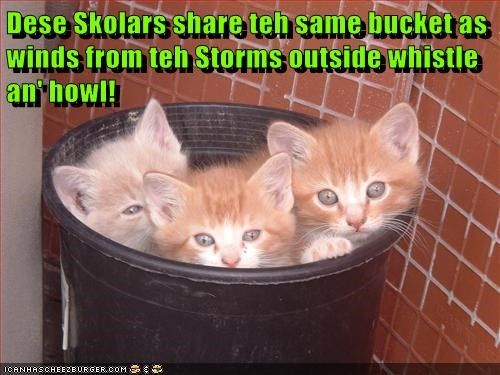Dese Skolars share teh same bucket as winds from teh Storms outside whistle an' howl!