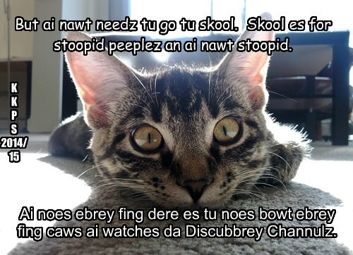 But ai nawt needz tu go tu skool.  Skool es for stoopid peeplez an ai nawt stoopid.