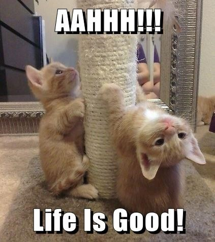 AAHHH!!!  Life Is Good!