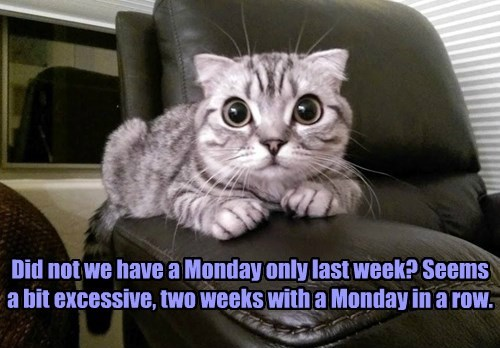 Did not we have a Monday only last week? Seems  a bit excessive, two weeks with a Monday in a row.