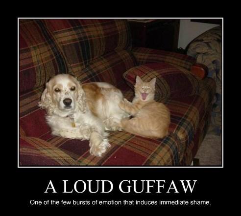A LOUD GUFFAW