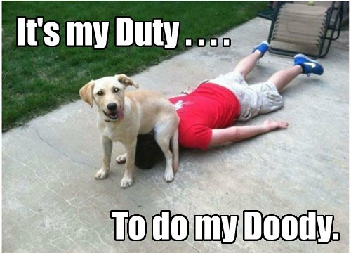 call of duty,dogs,poop