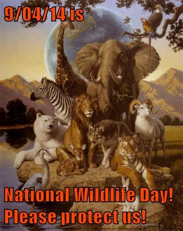 9/04/14 is  National Wildlife Day! Please protect us!
