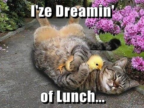 I'ze Dreamin'    of Lunch...