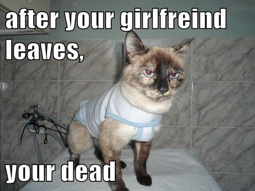 girlfriend,Cats