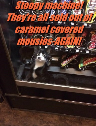 Stoopy machine!  They're all sold out of caramel covered mousies-AGAIN!