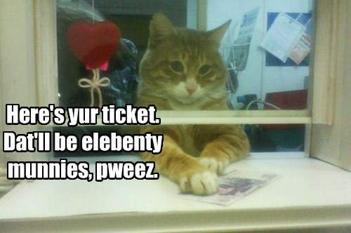 Ticket meister-cat.