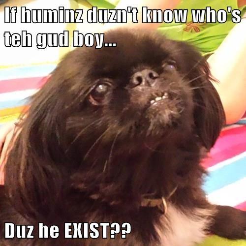 If huminz duzn't know who's teh gud boy...  Duz he EXIST??