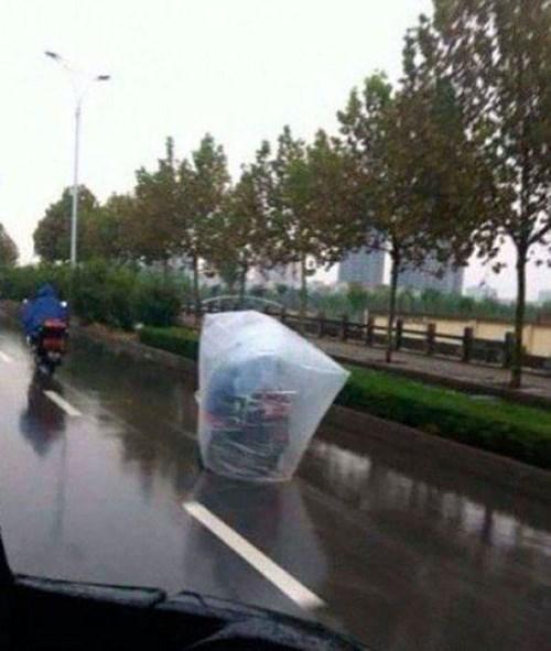 bad idea,motorcycle,dangerous