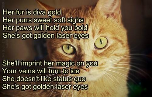 """Golden Laser Eyes"" TTO ""Bette Davis Eyes"" by Kim Carnes"
