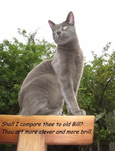 Shall I compare thee to old Bill? Thou art more clever and more brill.