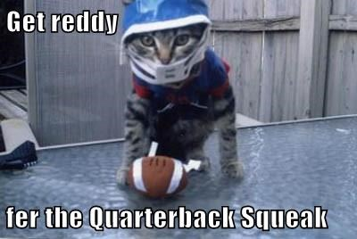 Tomcat Brady Is Hoping For A Comeback Year