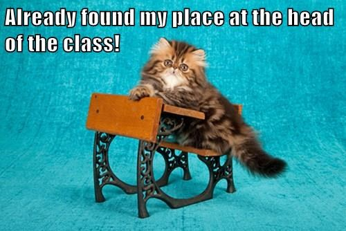 Already found my place at the head of the class!