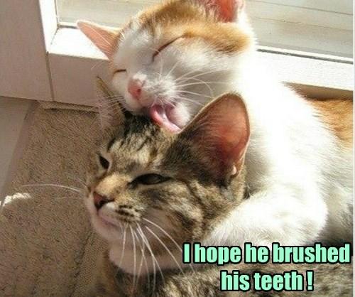 I hope he brushed his teeth !