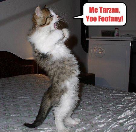 Me Tarzan, Yoo Foofany!