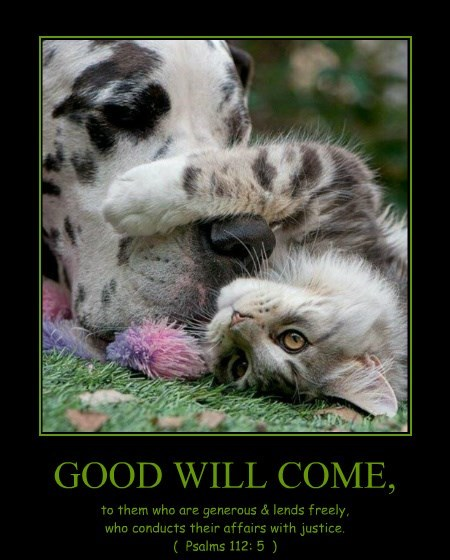 GOOD WILL COME,