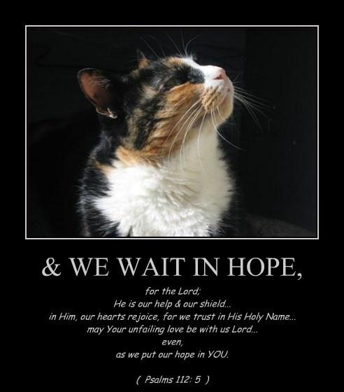 & WE WAIT IN HOPE,