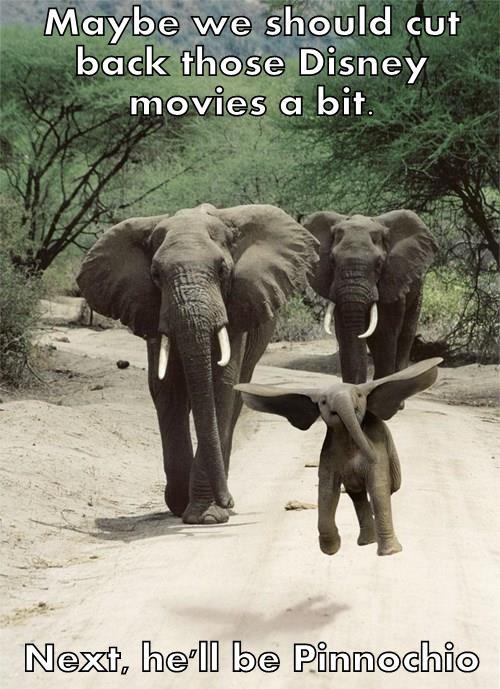 Maybe we should cut back those Disney movies a bit.  Next, he'll be Pinnochio