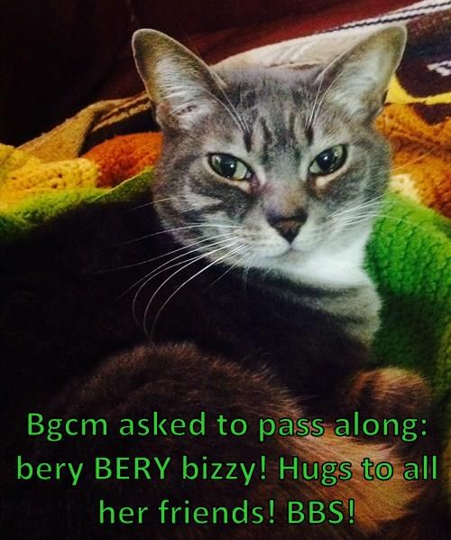 Bgcm asked to pass along: bery BERY bizzy! Hugs to all her friends! BBS!