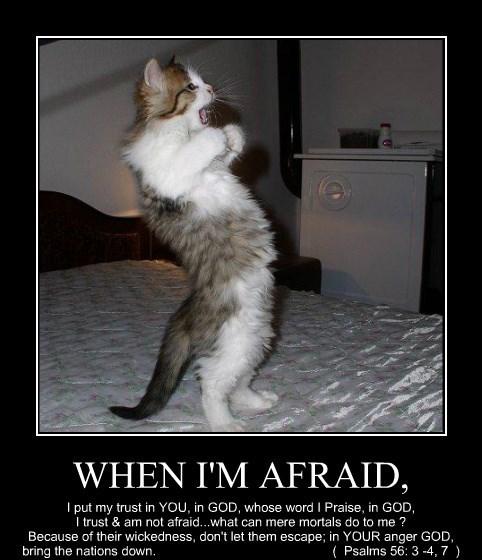 WHEN I'M AFRAID,
