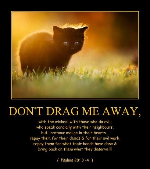 DON'T DRAG ME AWAY,