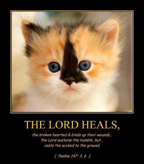 THE LORD HEALS,