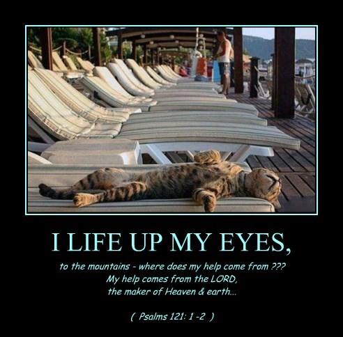 I LIFE UP MY EYES,