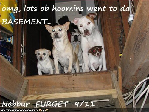 omg, lots ob hoomins went to da BASEMENT..  Nebbur  FURGET  9/11