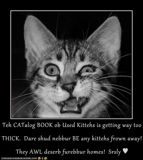 Teh CATalog BOOK ob Used Kittehs is getting way too THICK.  Dare shud nebbur BE any kittehs frown away!  They AWL deserb furebbur homes!  Srsly ♥