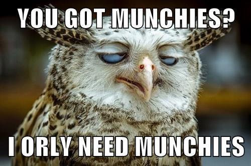 YOU GOT MUNCHIES?  I ORLY NEED MUNCHIES