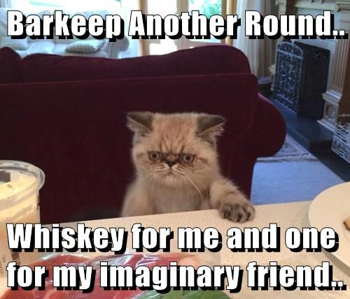Barkeep Another Round..  Whiskey for me and one for my imaginary friend..