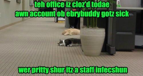 Yup! Teh Whole Staff