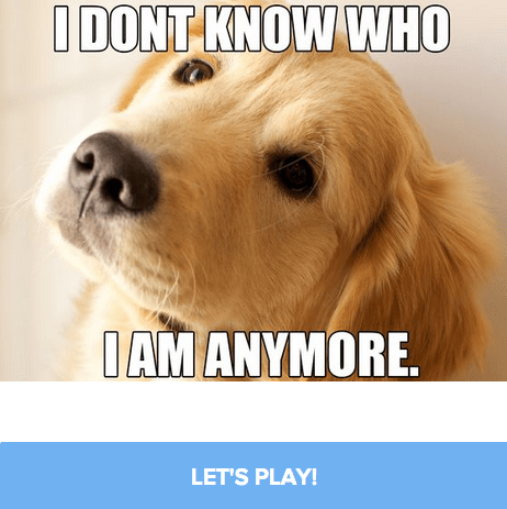 Find Out What Viral Video Dog You Are Here