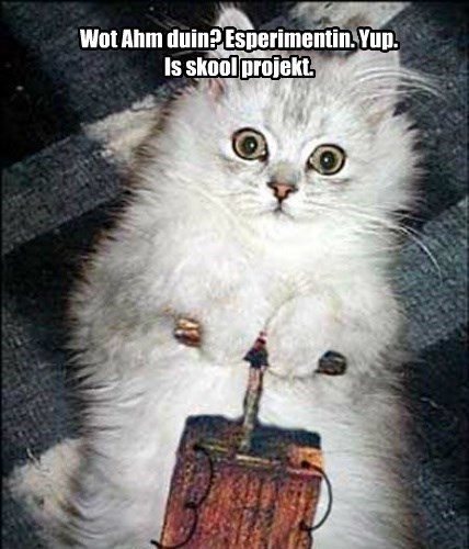 Wot Ahm duin? Esperimentin. Yup.  Is skool projekt.