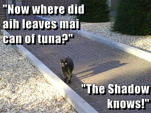 """Now where did                                                                                        aih leaves mai                                                                                              can of tuna?""  ""The Shadow"