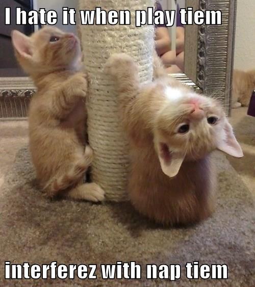 I hate it when play tiem  interferez with nap tiem